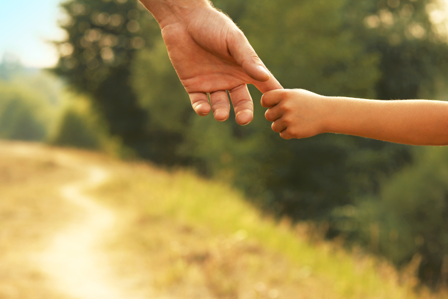 Small child holds parent's hand.
